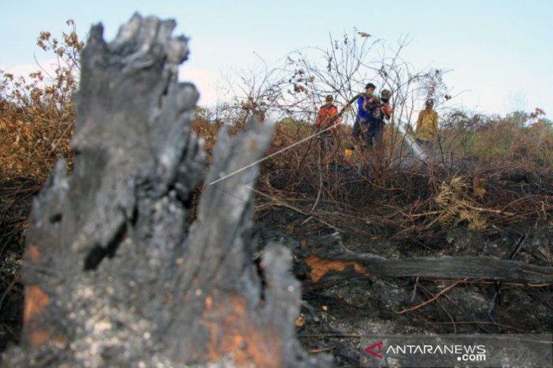 Kebakaran lahan gambut di Aceh Barat belum padam