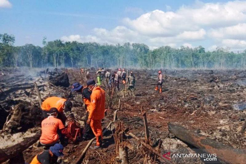 Hujan padamkan kebakaran 24,5 ha lahan di Aceh Barat dan Nagan Raya