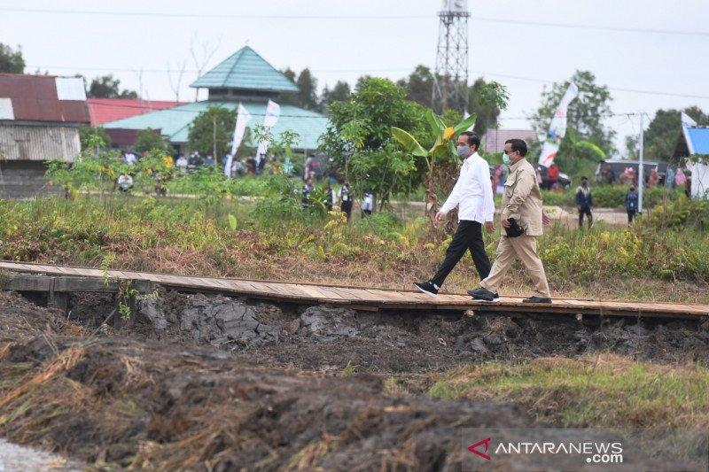 Presiden datangi lokasi pengembangan lumbung pangan baru di Kapuas