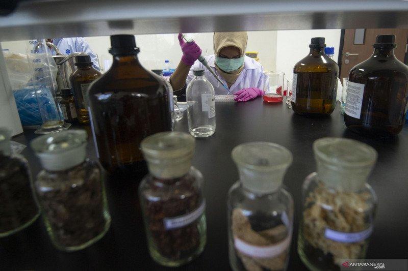 Kemenkes: Industri farmasi-alkes Indonesia harus didorong berkembang