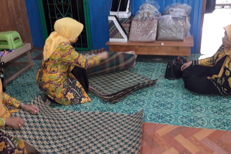 BRG perkuat ekonomi melalui pengembangan industri desa gambut