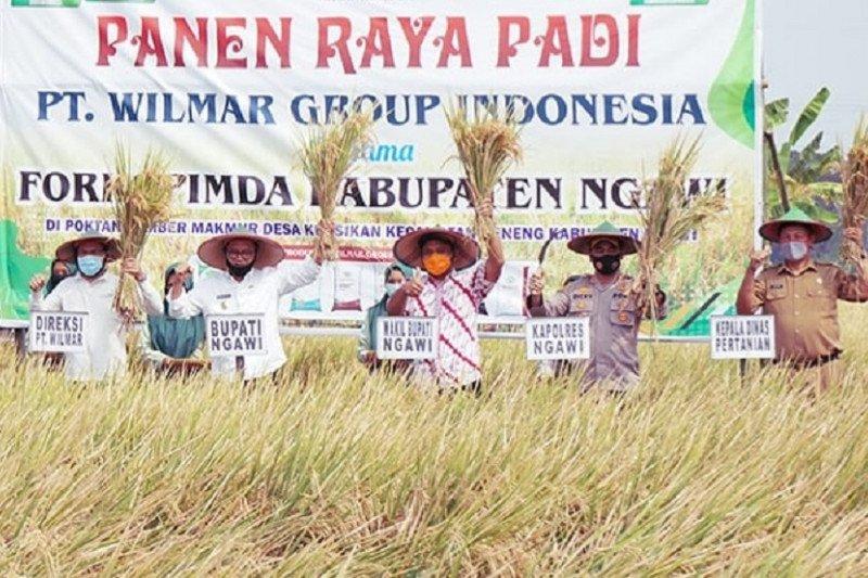 Teknologi pemupukan berimbang tingkatkan produksi padi 33 Persen