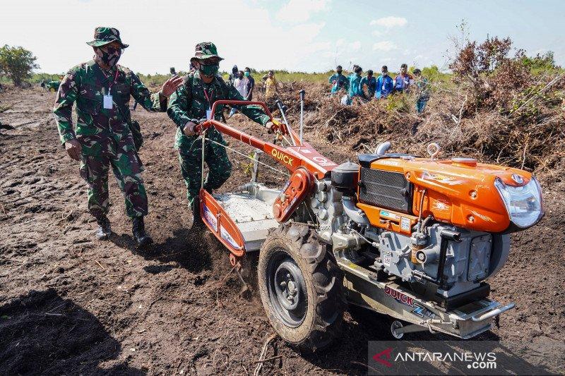 TNI dan pelajar ikuti pelatihan pertanian terpadu di lahan gambut
