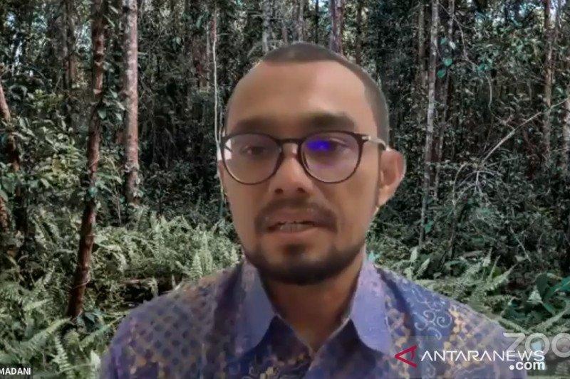 Direktur Eksekutif Yayasan Madani minta pemerintah pertahankan BRG