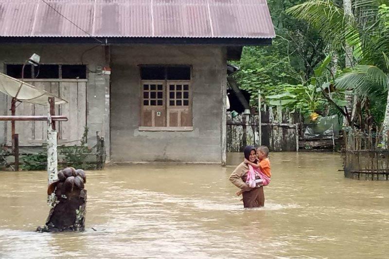 Walhi Aceh desak pembukaan kawasan hutan dihentikan