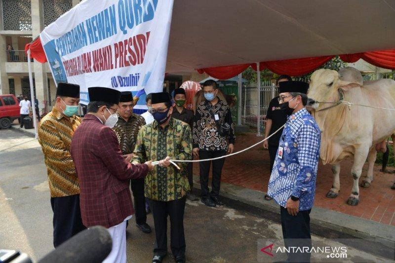 Ma'ruf Amin berkurban sapi di Istiqlal dan Serang