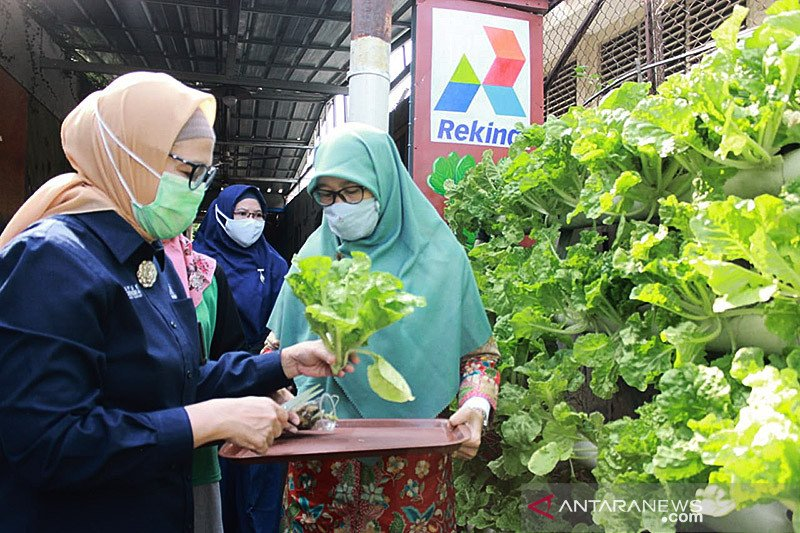 Rekind dukung program ketahanan pangan warga Jakarta