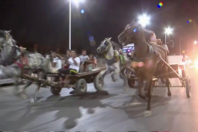 Menyaksikan pacuan kereta kuda di keramaian jalan di Kairo