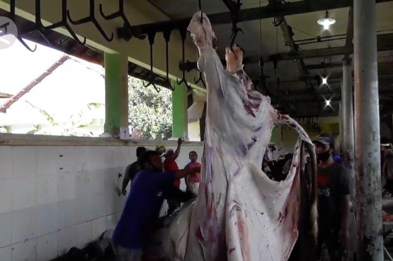 Hindari kerumunan, panitia sembelihkan hewan kurban di RPH