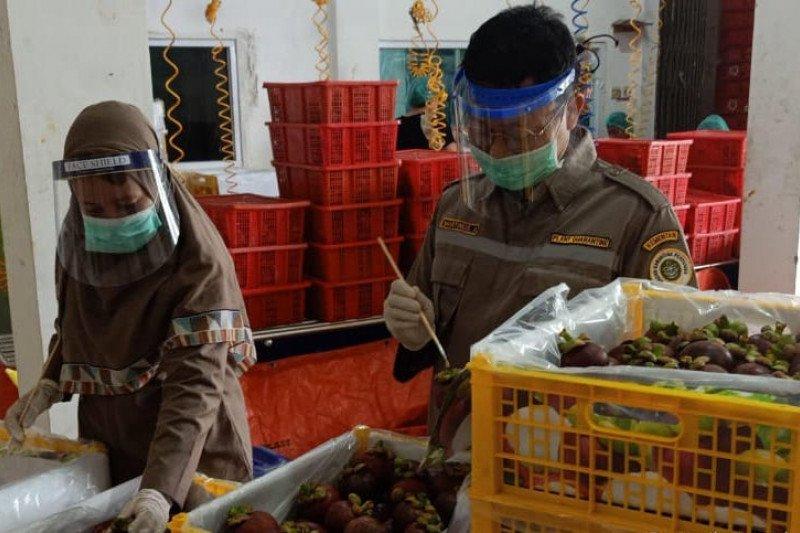 Kemendag: Neraca dagang pertanian defisit hingga 2,81 miliar dolar