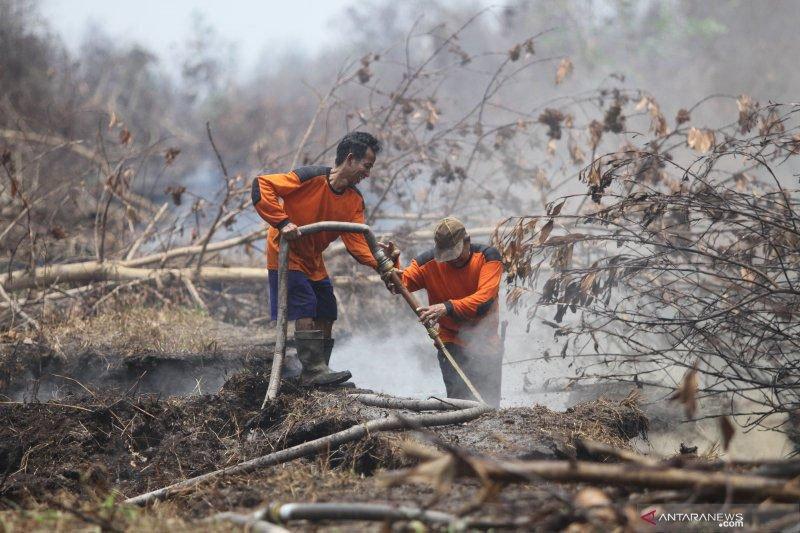 Agustus-Desember operasi pembasahan lahan gambut di Kalteng