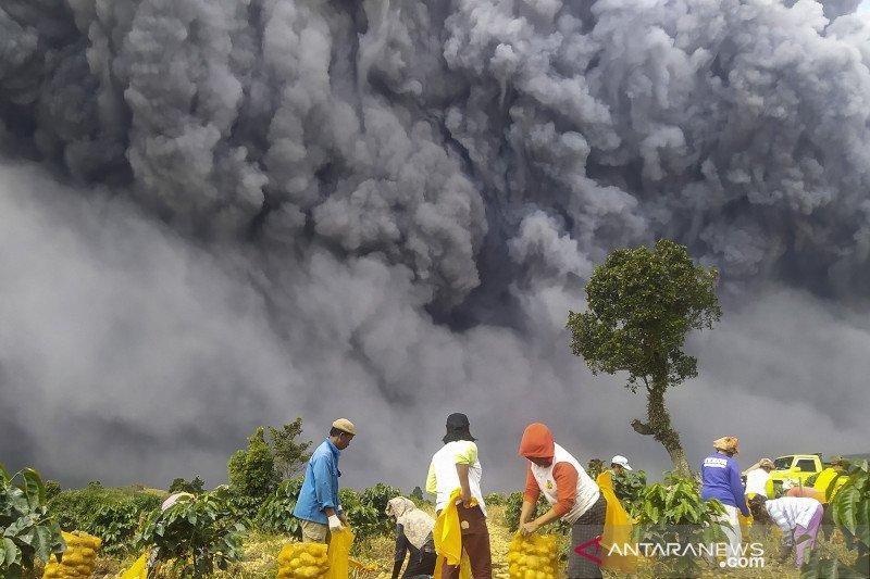 Meteorologi prediksi letusan Sinabung hingga ke Malaysia