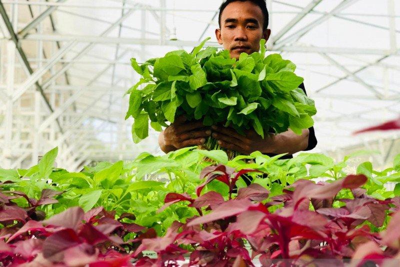 Aquagriculture disebut solusi ancaman krisis pangan di tengah pandemi