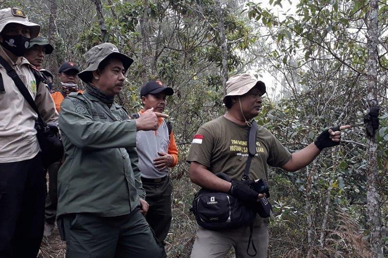 Seekor lutung jawa ditemukan mati mengenaskan di Kabupaten Malang