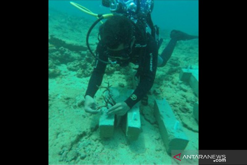 Nelayan Kecamatan Susoh rasakan manfaat terumbu karang