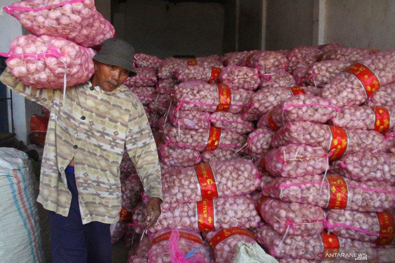Legislator: Usut impor bawang putih yang tak sesuai aturan