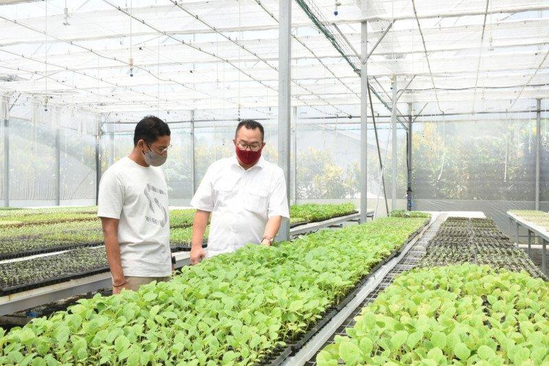 Rektor IPB: Bisnis paling menjanjikan adalah sektor pertanian