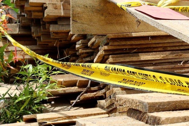 Ditpolair Polda Kalbar gagalkan penyelundupan 1.000 batang kayu ilegal