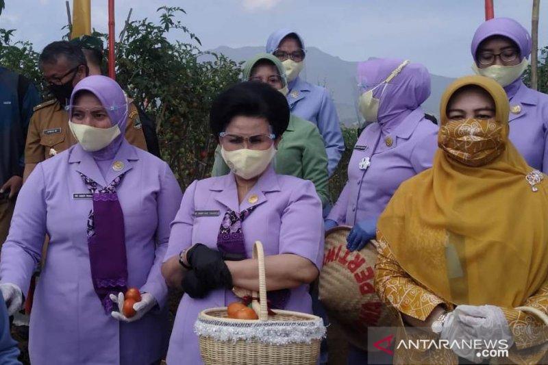 Ketua Umum Dharma Pertiwi lakukan panen raya di Cianjur