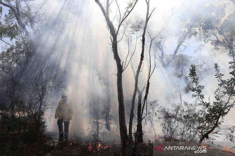 Bahaya besar kebakaran  Australia  saat suhu capai angka tertinggi