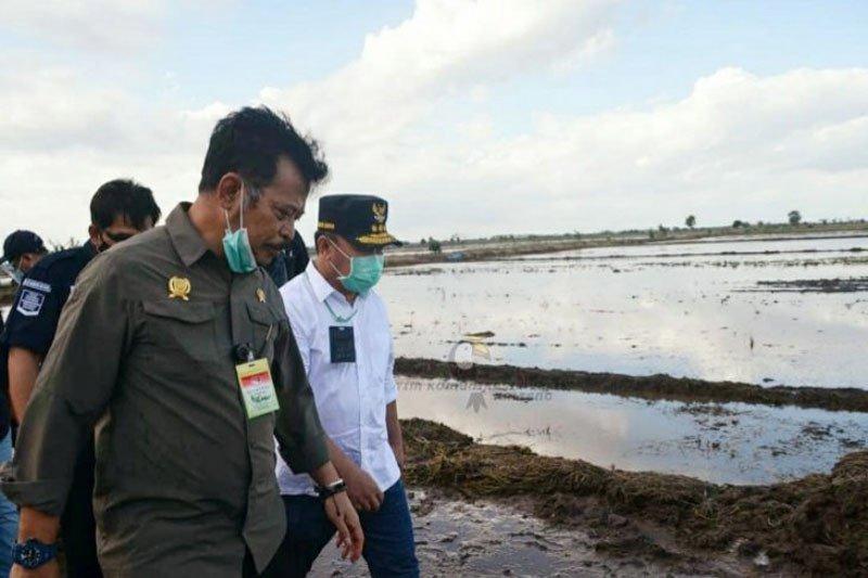 HGI dukung pengembangan lumbung pangan di Kalteng