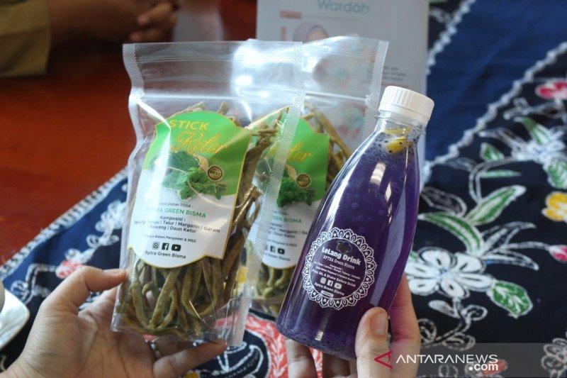 RPTRA di Jakut olah daun kelor jadi produk bernilai jual