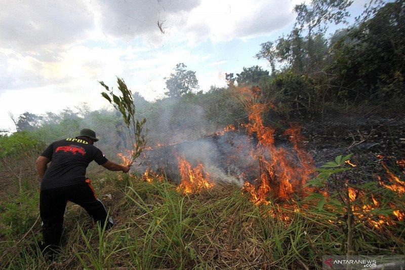 Karhutla di Kalimantan Selatan