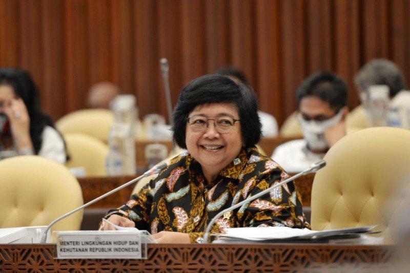 Menteri LHK: Lumbung pangan tidak kurangi kualitas lingkungan