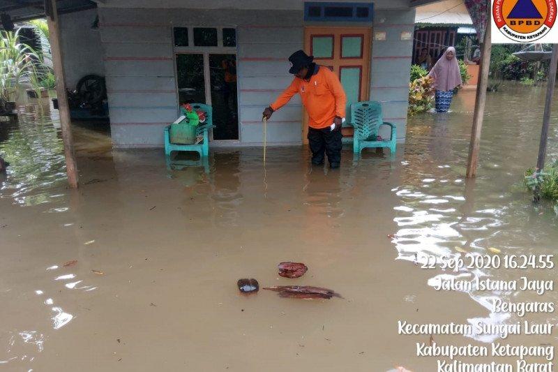 BNPB sebut banjir rendam 15 desa di Kabupaten Ketapang-Kalbar