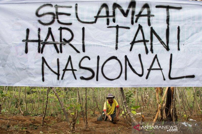 Aksi simpatik Hari Tani Nasional