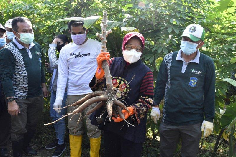 Jurus Wali Kota Risma hadang resesi di tengah pandemi COVID-19