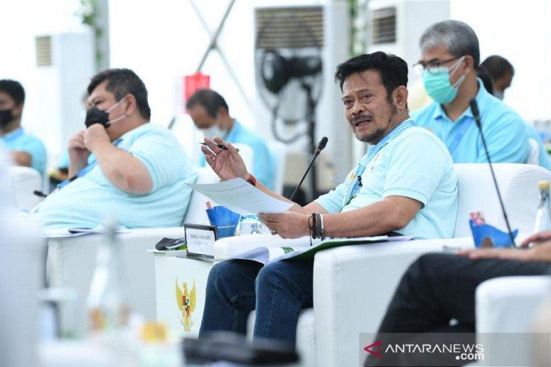 Rakorpim Komite PEN, Mentan kejar produksi lahan 7,5 juta hektare