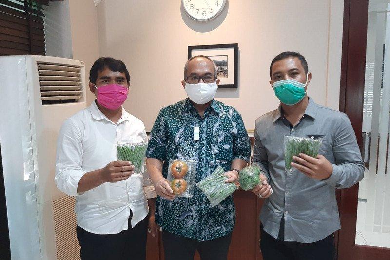 مزارعو ليمبانج يلتقون بالسفير الإندونيسي لاستكشاف سبل تطوير  صادرات الخضار إلى سنغافورة