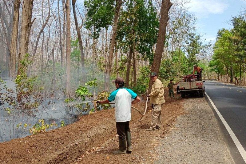 Brigdalkarhutla padamkan api di Taman Nasional Baluran dan Berau