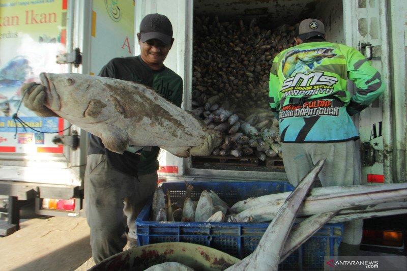 KSP: UU Cipta Kerja bantu nelayan naik kelas