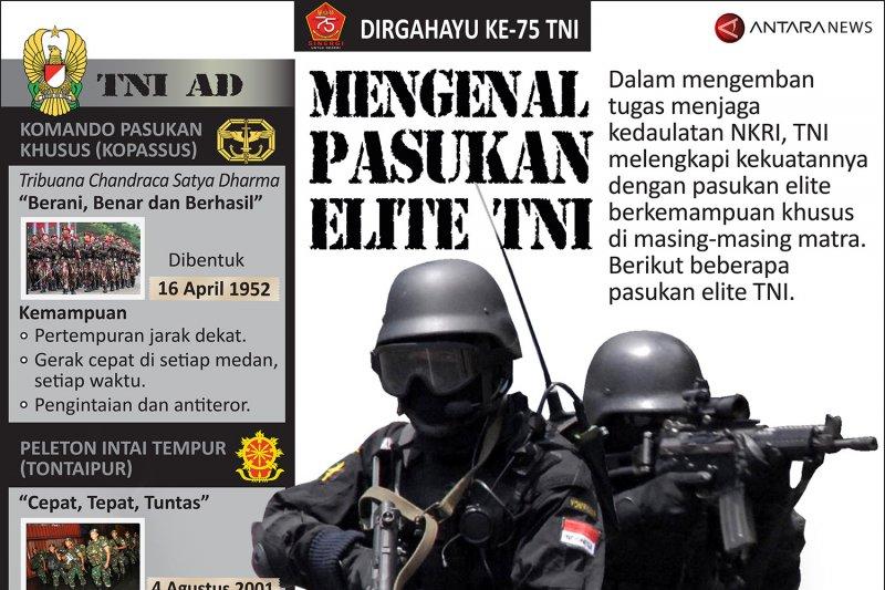 Mengenal pasukan elite TNI