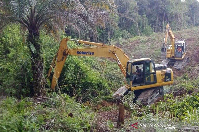 Empat koperasi kelapa sawit di Barito Utara ikuti program 'replanting'