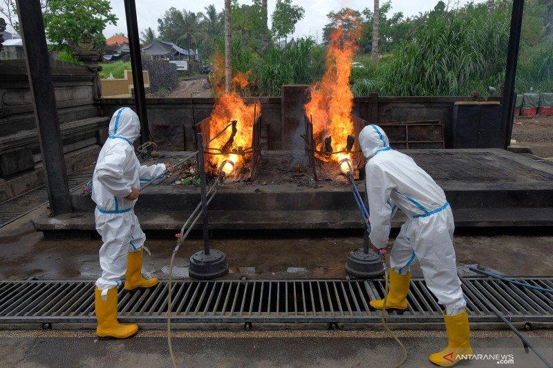 Proses kremasi jenazah pasien COVID-19 di Bali