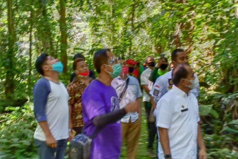 BBKSDA Sumut izinkan Taman Wisata Alam Sibolangit dibuka kembali