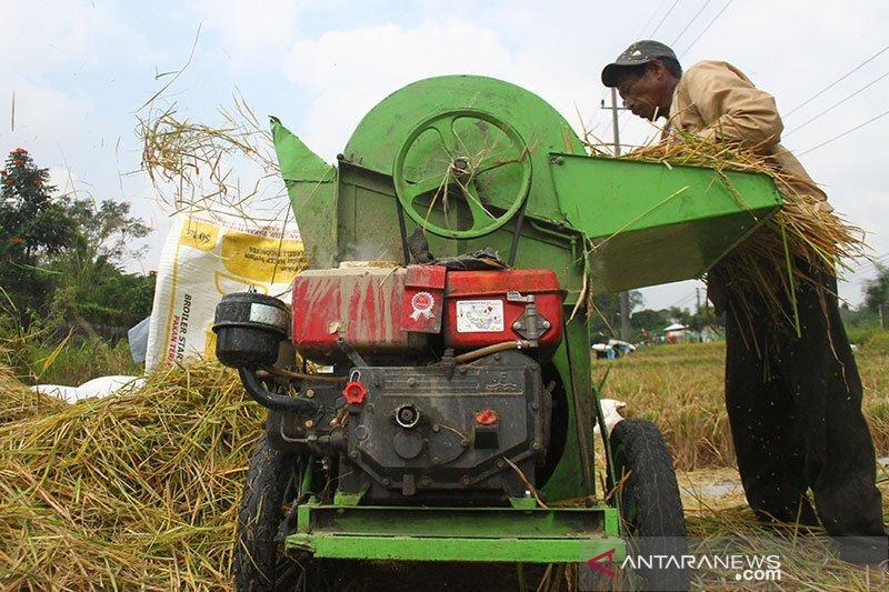 Teten sebut ditugaskan kembangkan koperasi pangan, serap produk petani