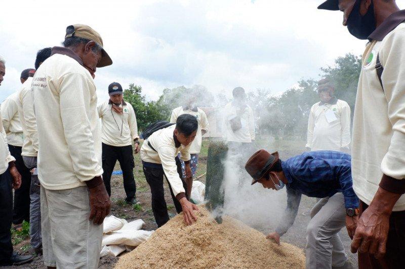 BRG kembangkan pedesaan berbasis kawasan ketahanan pangan