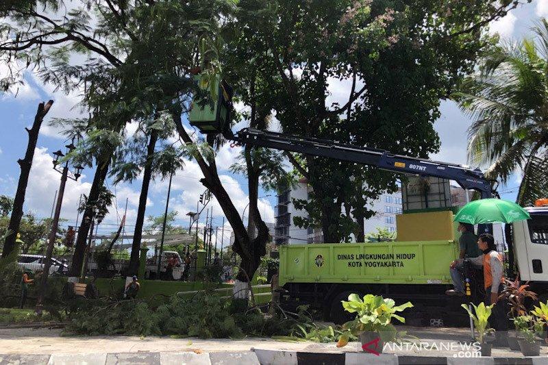 Sleman normalisasi saluran dan pangkas pohon antisipasi bencana