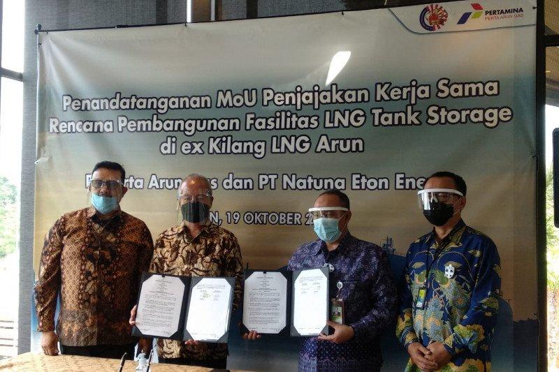 Perta Arun tandatangani kesepakatan dengan Natuna Eton Energi