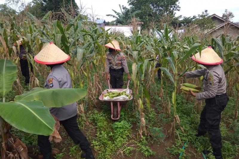 Kota Tanjungpinang sabet penghargaan ProKlim 2020 dari KLHK