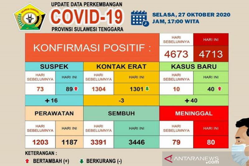 Sebanyak 3.446 dari 4.713 pasien COVID-19 di Sultra sembuh