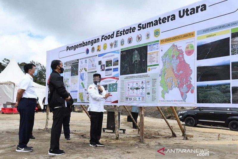 Mentan sebut tujuh investor siap dukung food estate di Humbahas