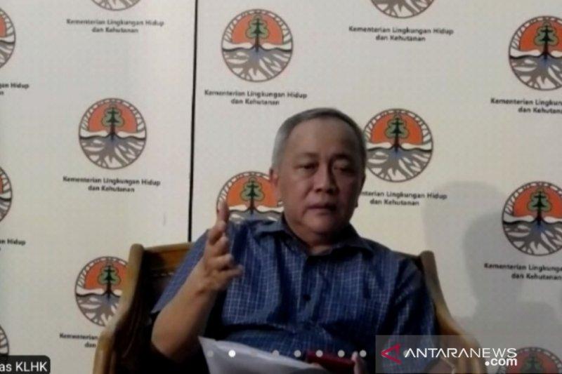 Pemerintah akan pastikan protokol ketat pembangunan di TN Komodo
