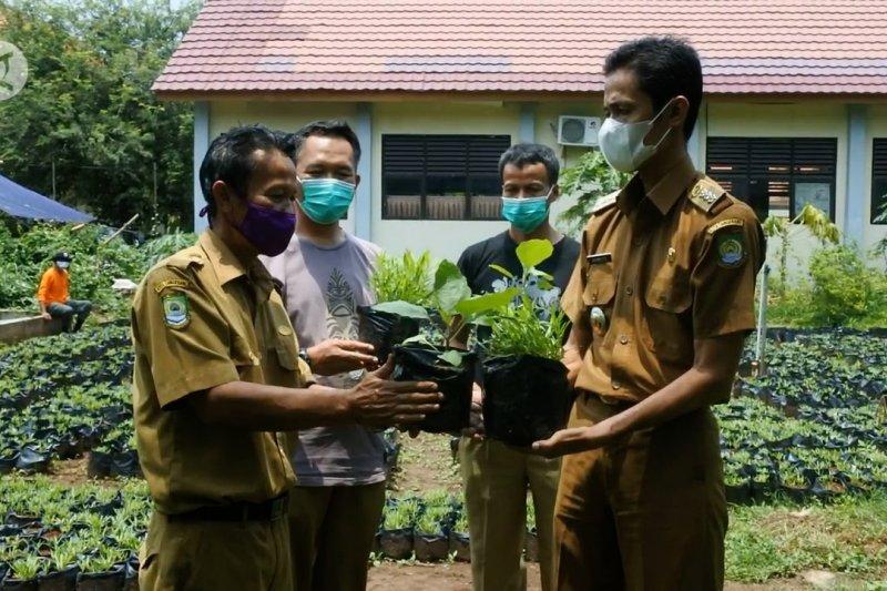 DKP Kota Tangerang siap bagikan 10 ribu bibit tanaman untuk warga