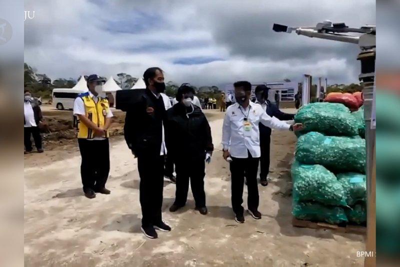 Jokowi tinjau pembangunan kawasan lumbung pangandi Sumatera Utara