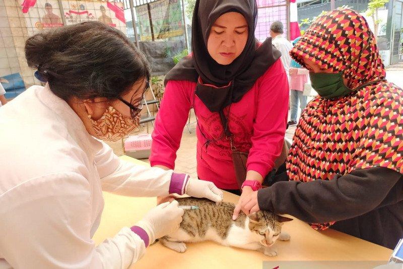 Sudin KPKP Jakbar layani vaksinasi rabies puluhan hewan